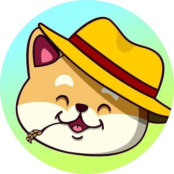 FamerDoge - BSC (farmerdoge) Profile Image | Linktree