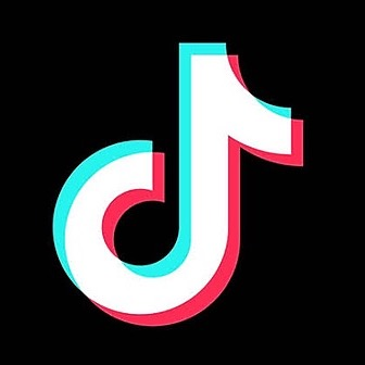 Ally's SNS pages TikTok Link Thumbnail | Linktree