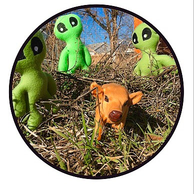 Cryptid Comforts Etsy Link Thumbnail | Linktree