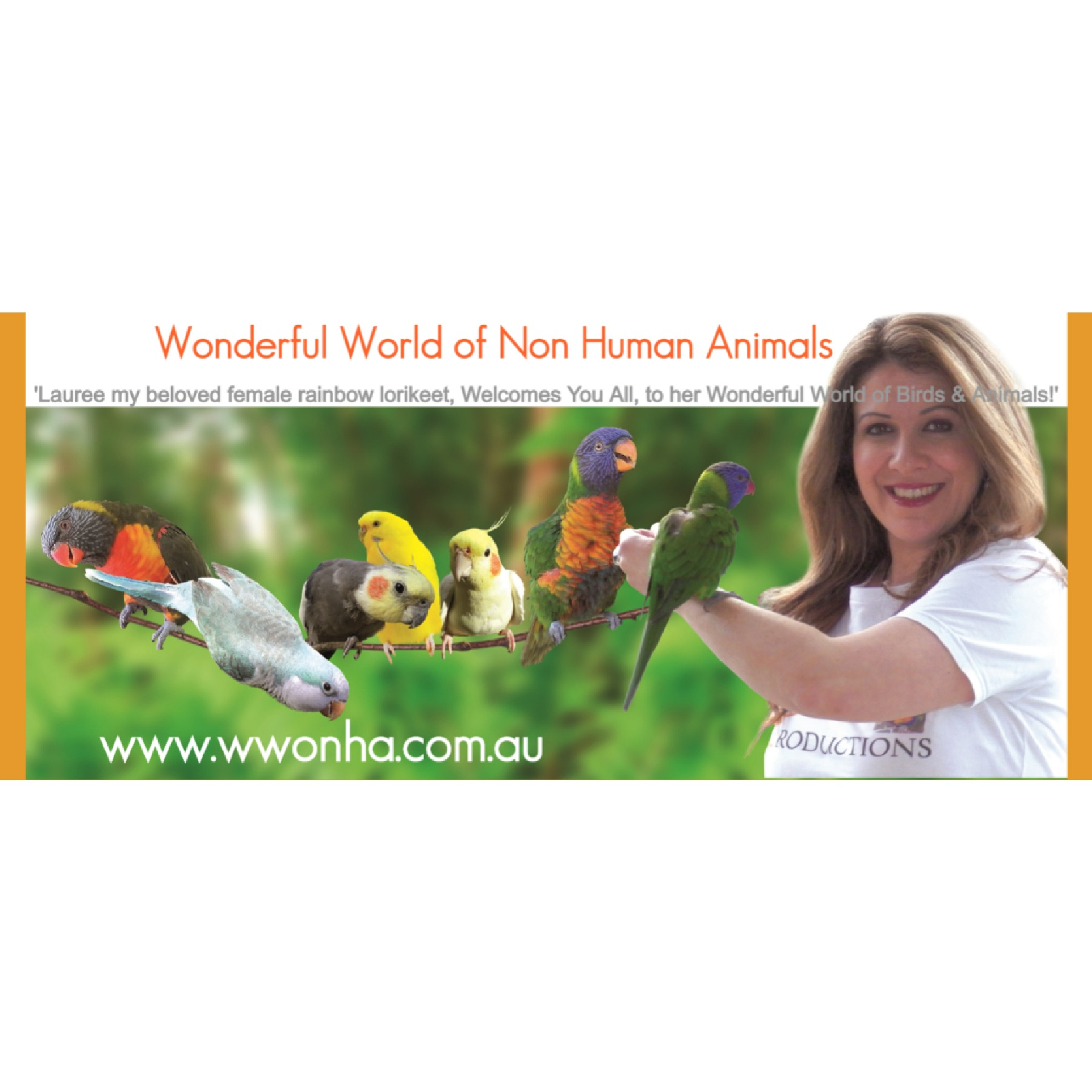 Welcome to my Links! Wonderful World of Non-Human Animals Link Thumbnail   Linktree