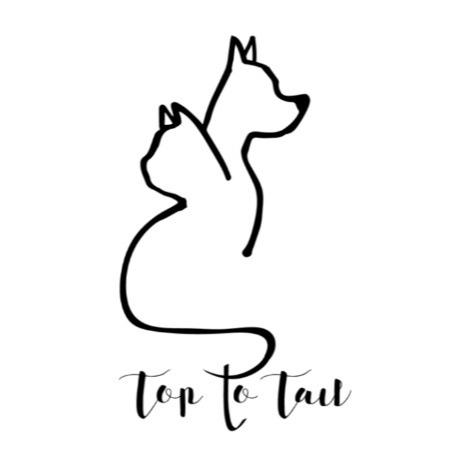 @toptotailsalons (TTTSalons) Profile Image | Linktree