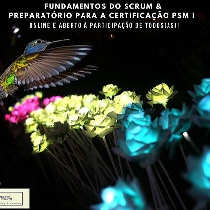 Preparatório Scrum PSM I e atualizações do Scrum Guide 2020