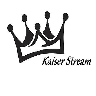 @KaiserStream Profile Image   Linktree