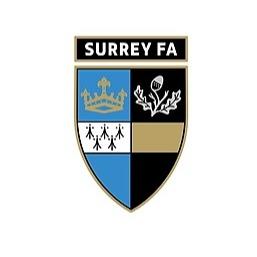 Stoppage Time (SurreyFA) Profile Image | Linktree