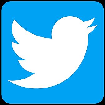 @thepopkoproject Follow us on Twitter Link Thumbnail | Linktree