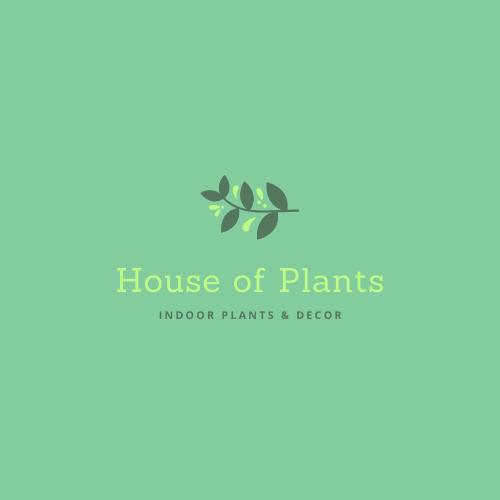 @mecca_amirah My House of Plants Link Thumbnail | Linktree