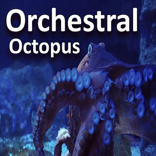 SPOTIFY PLAYLIST - ORCHESTRAL OCTOPUS