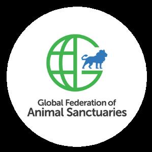 @gfassanctuary Profile Image   Linktree
