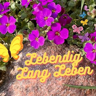 Dr. med. Katja Aschenbrenner Blog Lebendig Lang Leben Link Thumbnail | Linktree