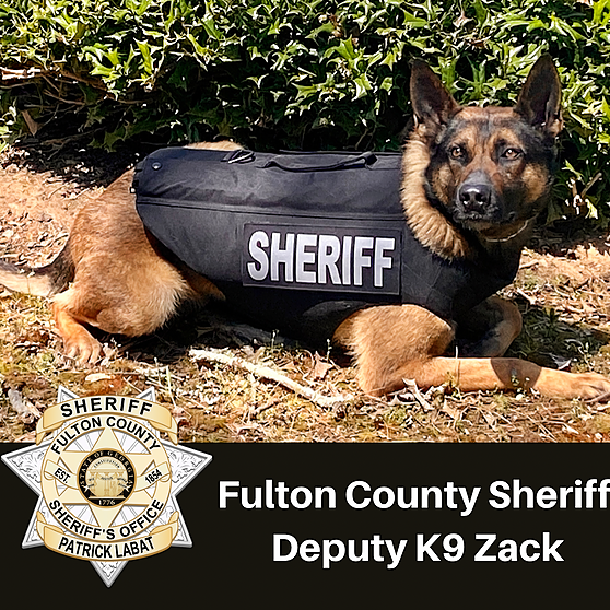 Fulton County Sheriff FCSO's K9 Unit Receive Donated Stab and Bullet Proof Vests Link Thumbnail   Linktree