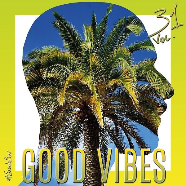 @sauroleben GOOD VIBES Vol. 31 🌴🏖️🍍 Summer Hits Link Thumbnail | Linktree