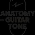 @Anatomyofguitartone Profile Image | Linktree
