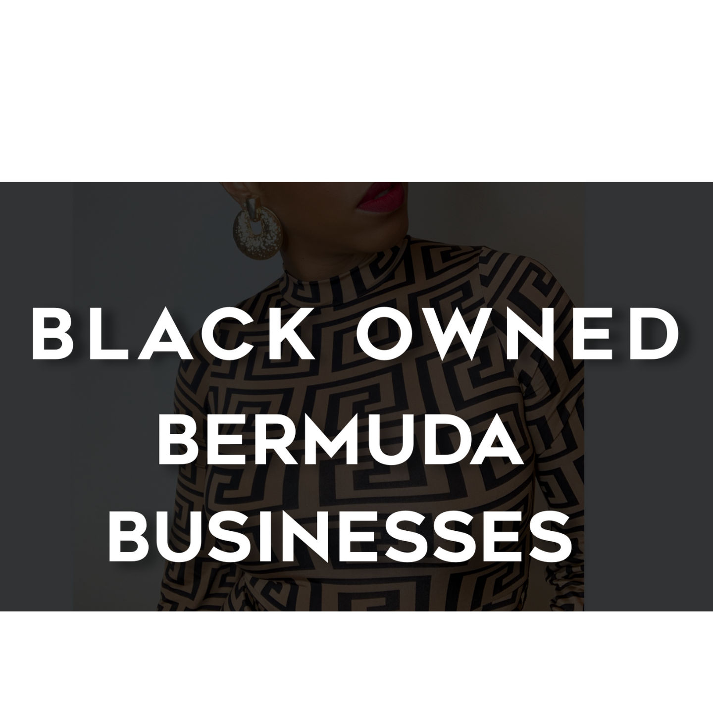 Vol. 1- Black Owned Bermuda Businesses You Need to Know!
