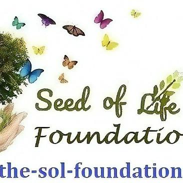 The Seed of Life Foundation (theseedoflifefoundation) Profile Image | Linktree