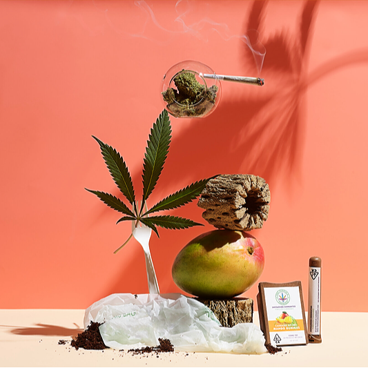 Featured in the San Francisco Chronicle Equitable Cannabis Brands