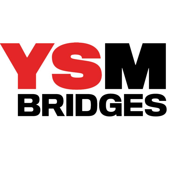 @YSMBridges Profile Image | Linktree