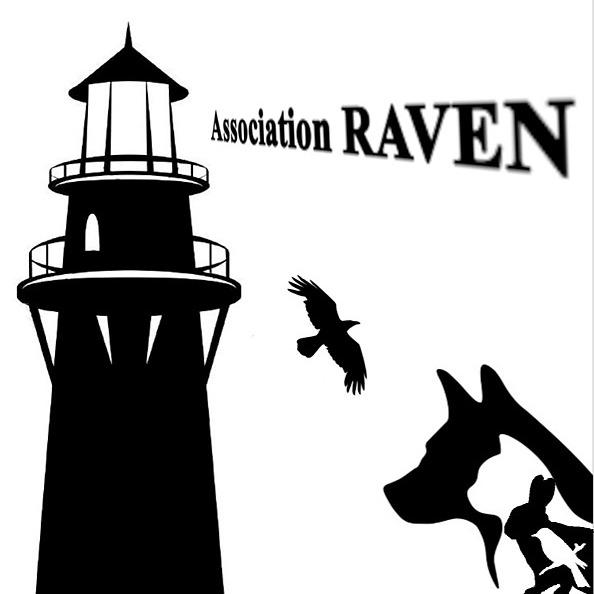 Association RAVEN Site de l'Association RAVEN Link Thumbnail   Linktree