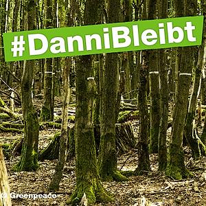 Defend the Dannenröder forest