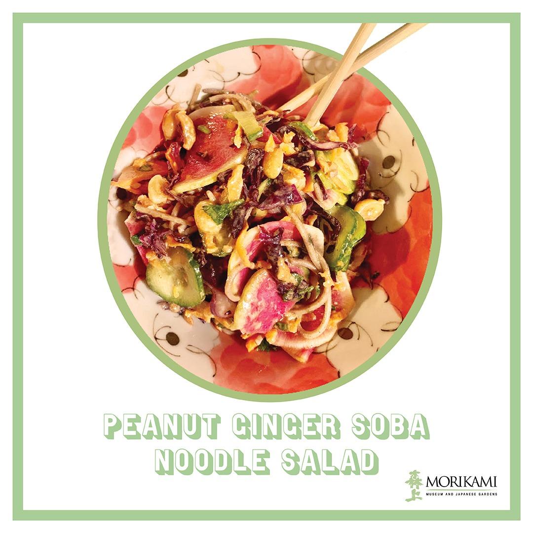 Soba Noodle Salad Recipe!
