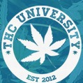 Real | Unique | Magical Enroll THC-CBD   Education &Certification Link Thumbnail | Linktree
