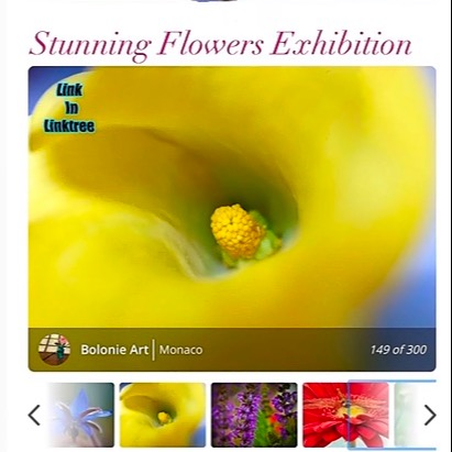 Bolonie Stunning Flowers #149 Dodho magazine January 2021 Link Thumbnail   Linktree