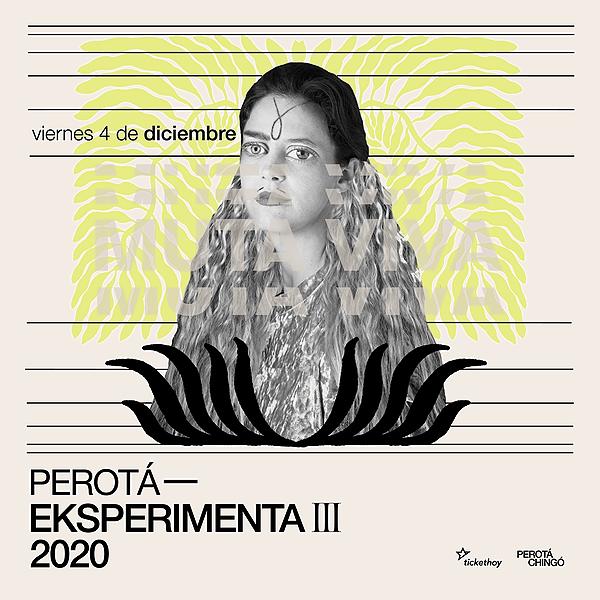 @Perota_Chingo Profile Image | Linktree