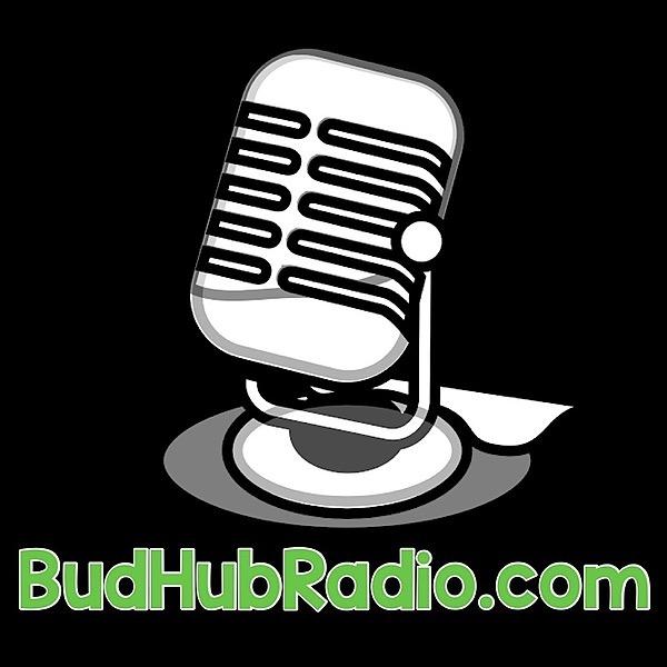 Dave Strauss BudHubRadio Link Thumbnail | Linktree