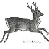 @morikazo Profile Image | Linktree