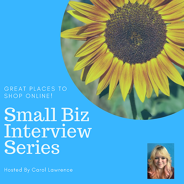 Small Biz Interview Series $45