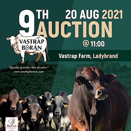 2021 Vastrap Auction Info (vastrapboran) Profile Image   Linktree