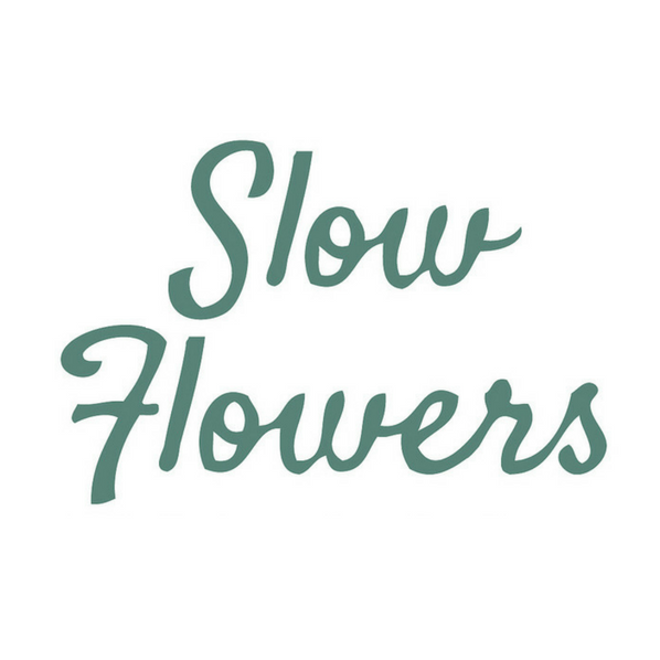 Slow Flowers Channels & Events SUBSCRIBE: Newsletter Sign-Up Link Thumbnail   Linktree
