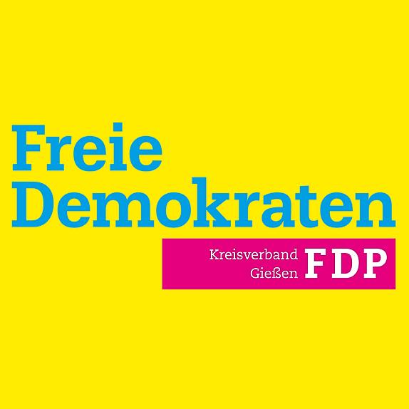 Dominik Erb FDP Kreisverband Gießen Link Thumbnail | Linktree
