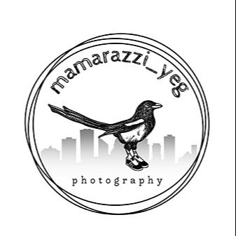 @mamarazzi_yeg Profile Image   Linktree