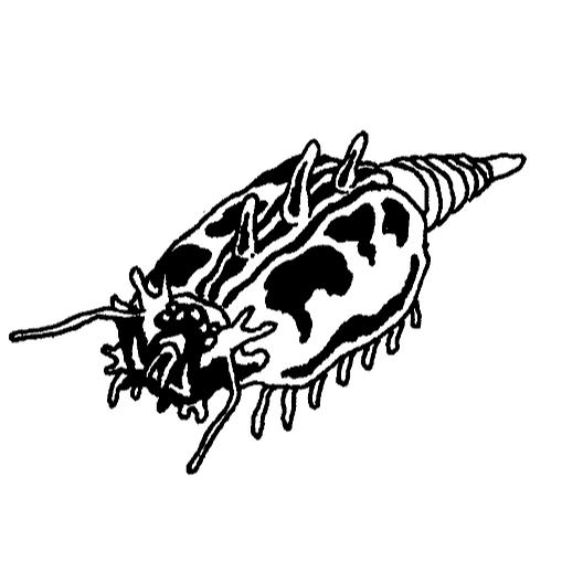 Tristan Brossard (pvrplyama) Profile Image | Linktree