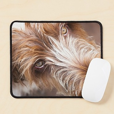 @heidiannemorris SPINONE MOUSE 🖱️ MATS Link Thumbnail | Linktree