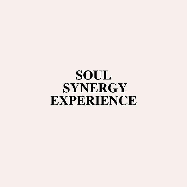 @soulsynergyexperience Profile Image | Linktree