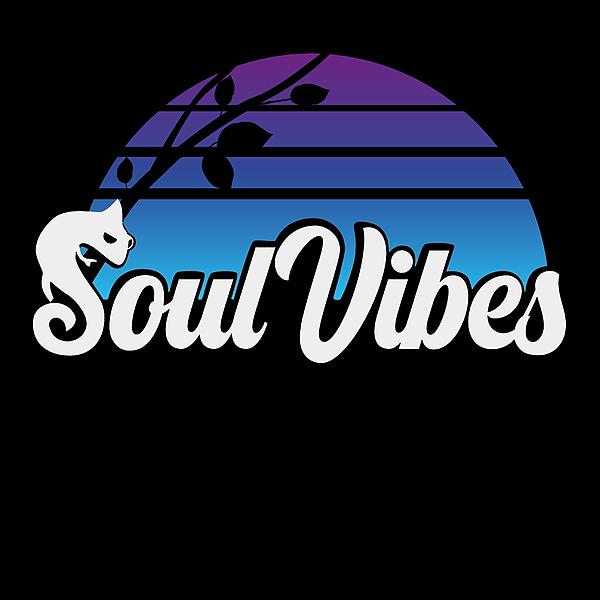 Soul Vibes Sound System (soulvibessound) Profile Image | Linktree