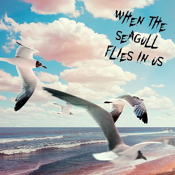 Less Mess WHEN THE SEAGULL FLIES IN US - FBB Link Thumbnail | Linktree