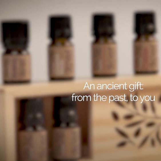 NOVÉ VIDEO: Kolekce starodávných olejů