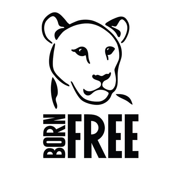 The History of Born Free