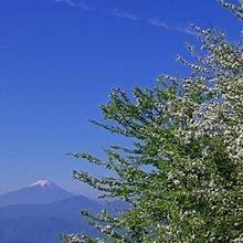 こだま登山部 こだま登山部  ホームページ Link Thumbnail | Linktree