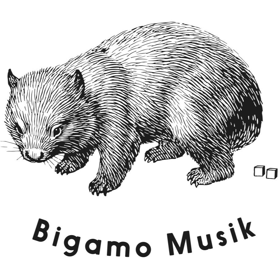 @bigamo Profile Image   Linktree