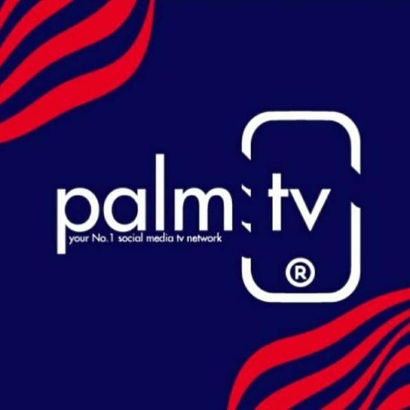 @Palm.TV Profile Image | Linktree