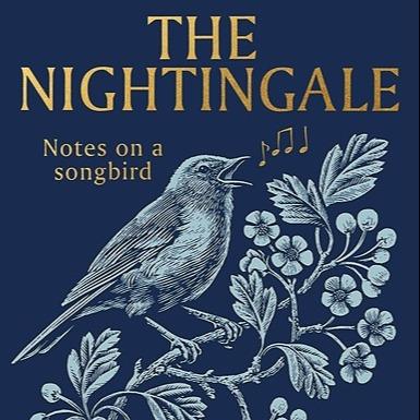 The Nightingale by Sam Lee (SamLeeNightingale) Profile Image   Linktree