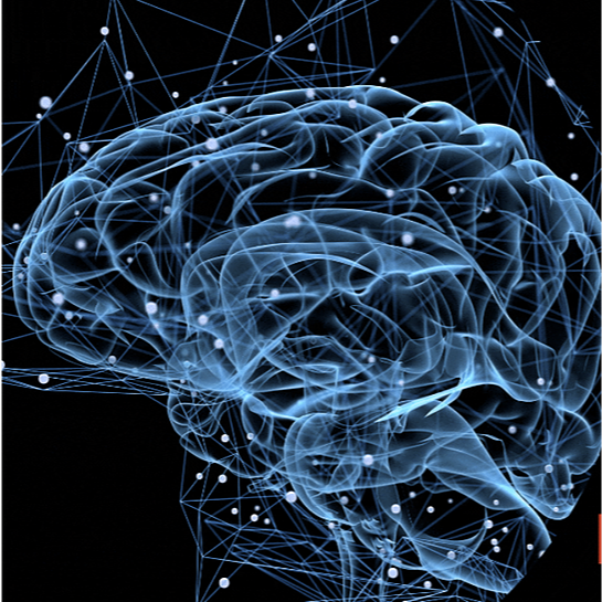 CoCreation Station 🧠 The Brain Course Link Thumbnail | Linktree