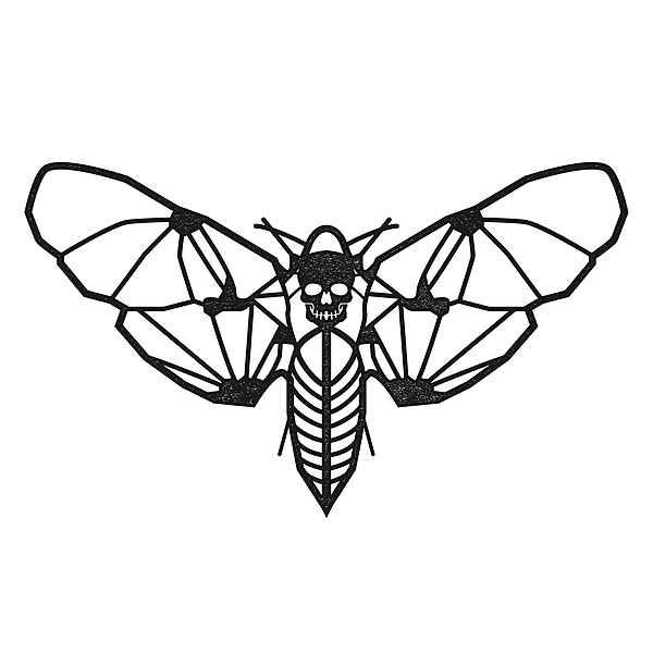 @marisaandthemothsband Profile Image | Linktree