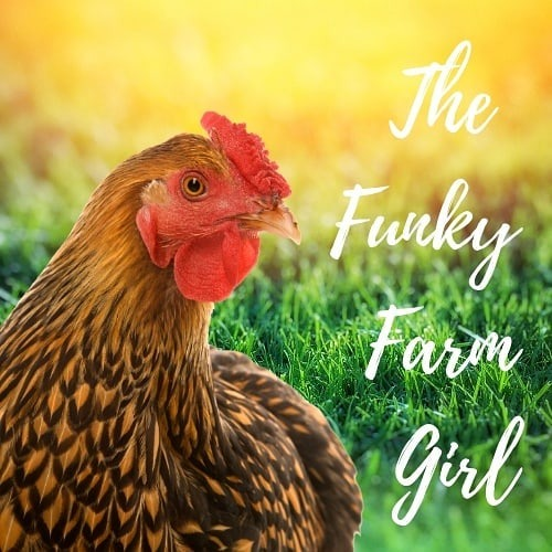 The Funky Farm Girl (thefunkyfarmgirl) Profile Image | Linktree
