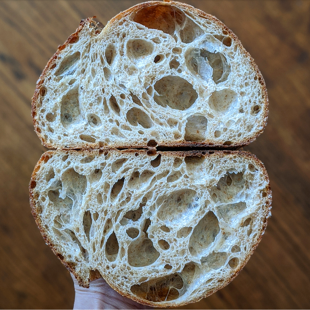 Under-Fermentation & Fool's Crumb Examples