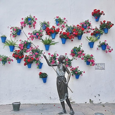 Emiko Nakamura Facebook Andalucía アンダルシア街歩き Link Thumbnail   Linktree