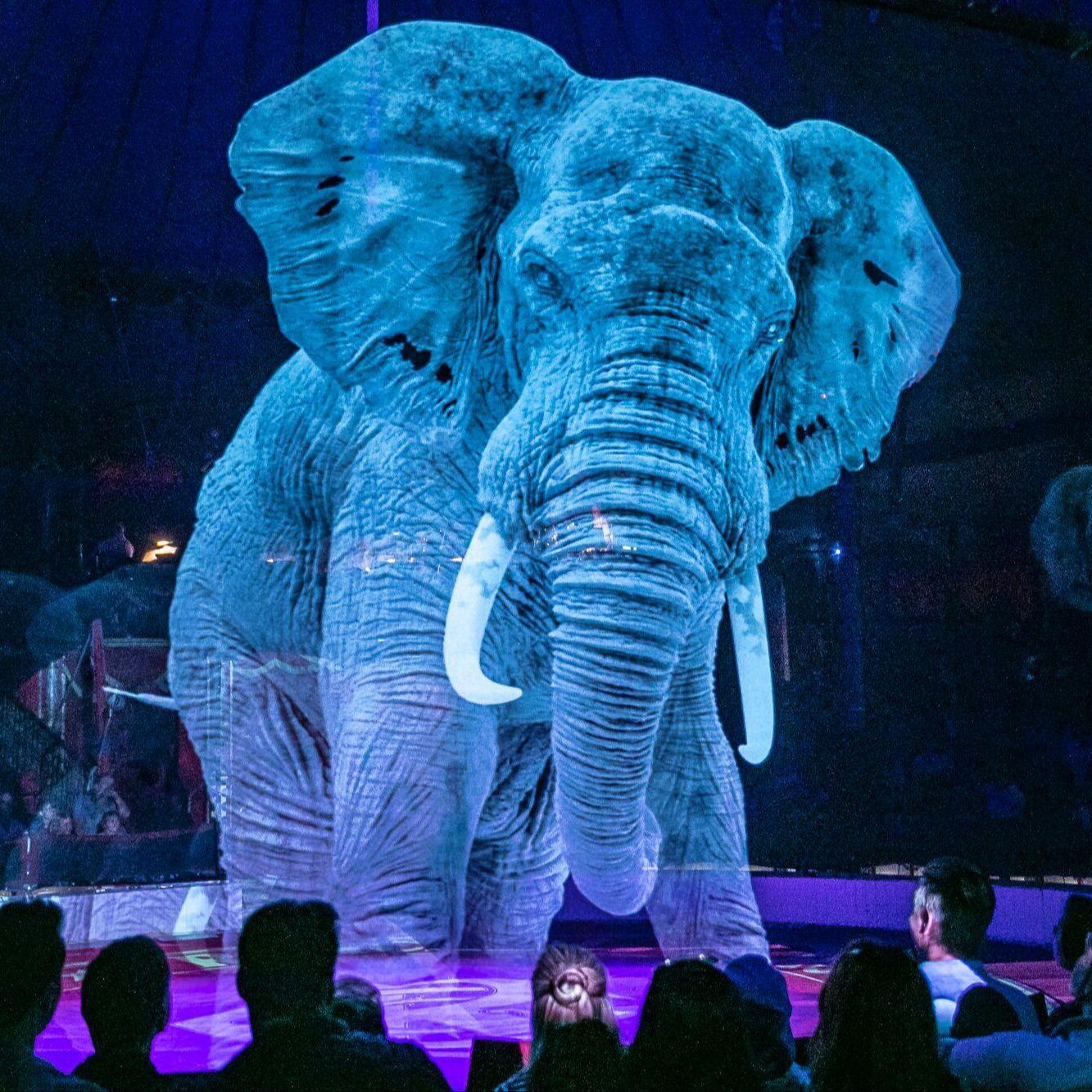 @fashionhr Cirkus s hologramima životinja izazvao veliko oduševljenje! Link Thumbnail | Linktree